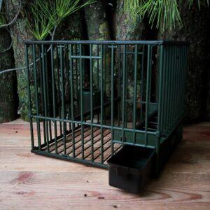 cage grive plastique grande