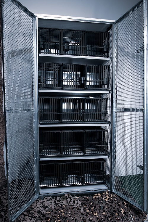 Armoire de protection 15 cages à grive
