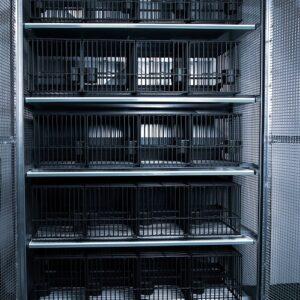 Armoire de protection 20 cages à grive