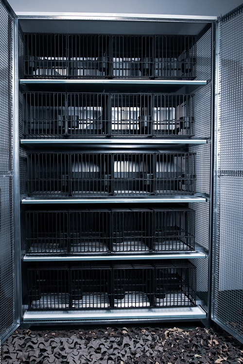 Armoire de protection 20 cages à grive